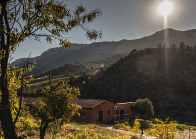 Gratavinum Priorat Winery