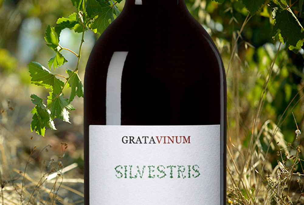 Silvestris, Parés Baltà signature for natural wine from the Priorat