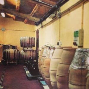 Ánforas y barricas en la bodega de Gratavinum, vinos biodinámicos