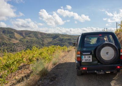 Vineyard Tour in Off Road Vehicle